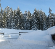Paysages d'hiver